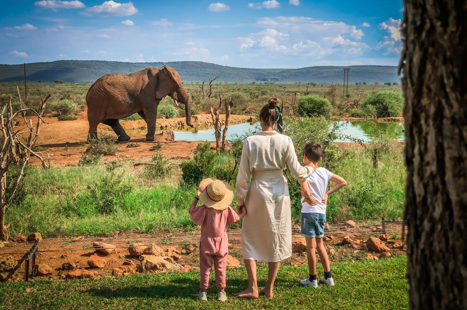 madikwe, more hotels, south africa