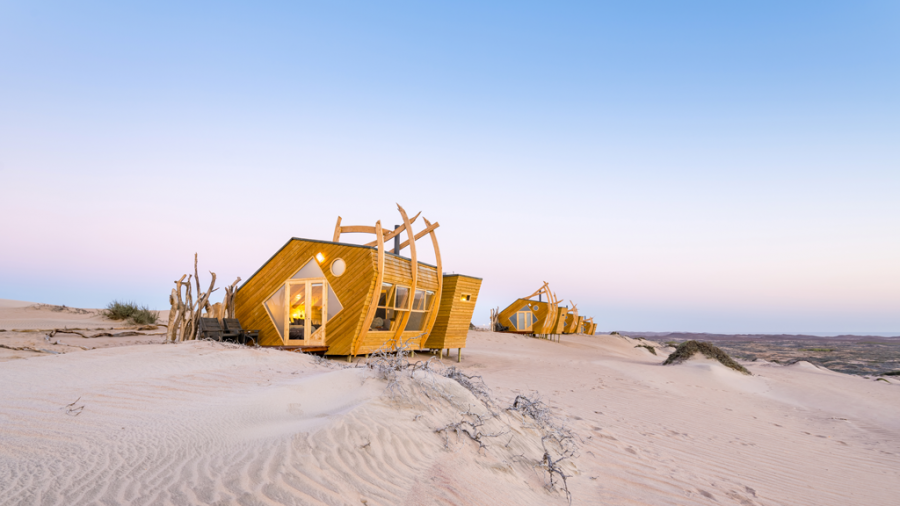 namibia, skeleton coast, shipwreck lodge, natural selection